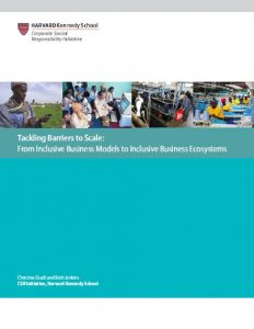 Tackling barriers to scale: Company strategies to build inclusive business ecosystems