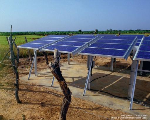 energy-agri-nexus
